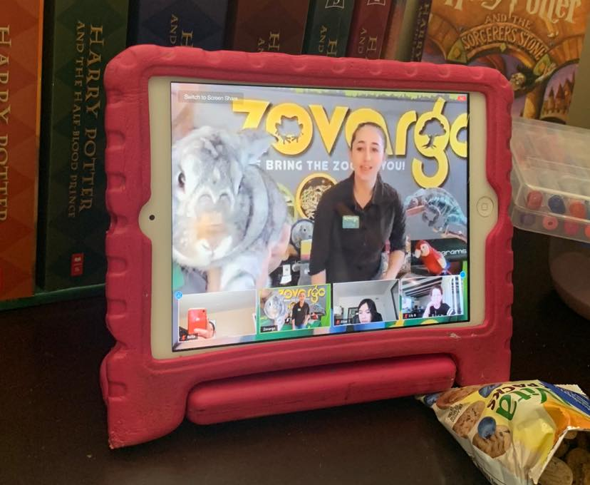 Zovargo Virtual Animal Programs